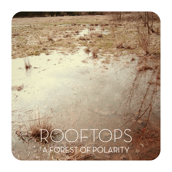 Rooftops - A Forest of Polarity (2009)